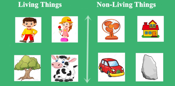 Science Year 2 (Living Things And Non-living Things)