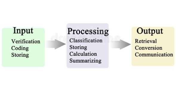 How Much Do You Know About Data Processing Cycle? Trivia Quiz