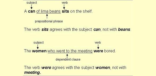 Subject Verb Agreement Test: Quiz!