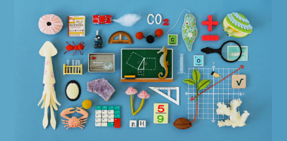 A Mix Quiz Of Mathematics And Science!