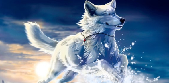 What Anime Wolf Are You? Personality Quiz
