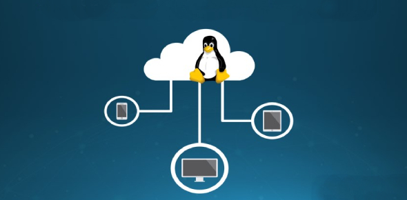 Linux Networking Quiz 2