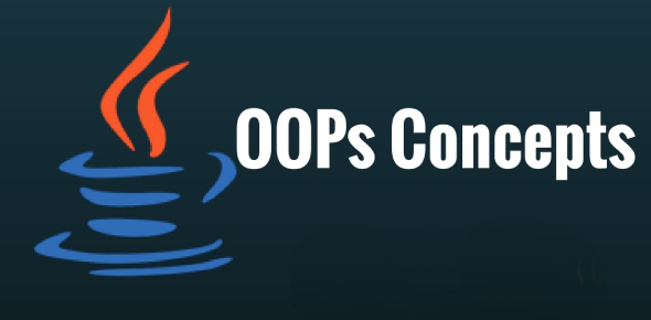 Java Oops Concepts Quiz: Test!