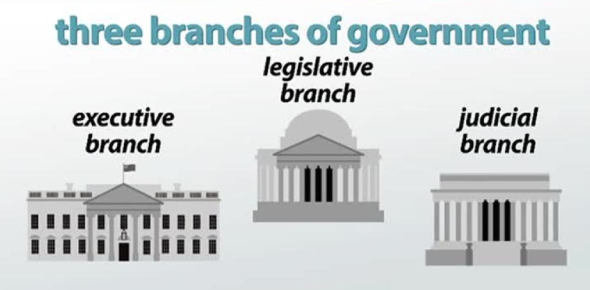 The Three Branches Of Government Quiz