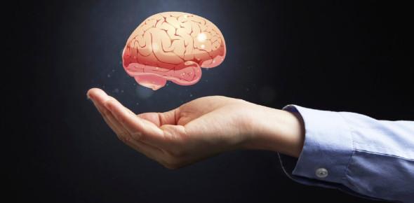 True Or False - Brain Quiz