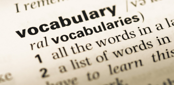 Election Process: Vocabulary Quiz! Test