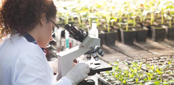 Environmental Science Practice Quiz Questions! Trivia