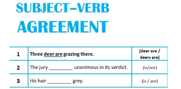 English Grammar Quiz: Subject-Verb Agreement Exercise