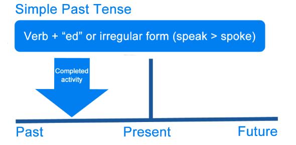 The Past Participle Form