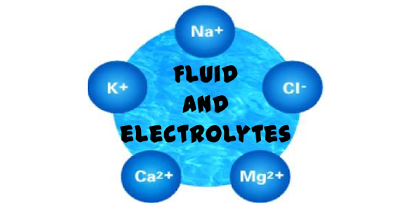 NCLEX License Exam: Fluids And Electrolytes Practice Test
