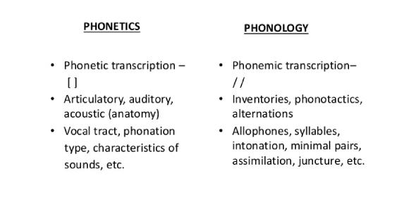 Phonetics And Phonology Quiz Exam!