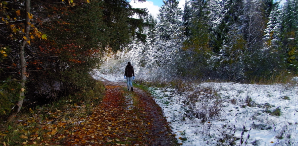 Which Fall Or Winter Holiday Are You Actually?