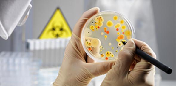 Microbiology Lab: Idenitifcation Of Enterics