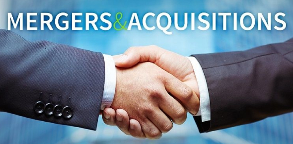 Mergers And Acquisitions Quiz
