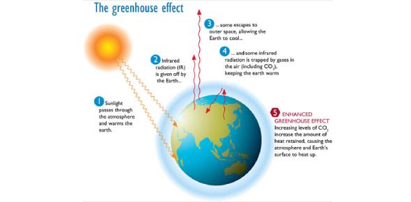 Albedo And Greenhouse Effect Quiz