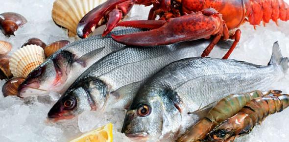 Fish & Seafood Chapter 3: Shellfish