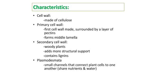 Quiz: Practice Questions On Characteristics Of Cell!