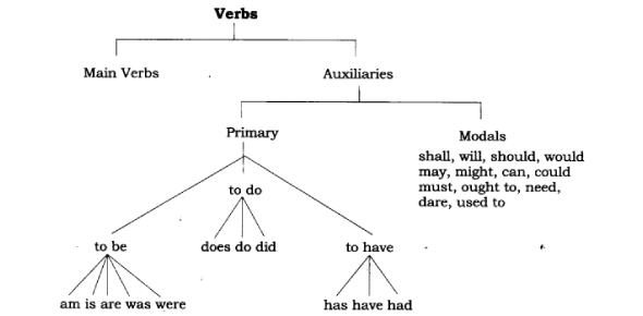 Verbs And Verb Usage