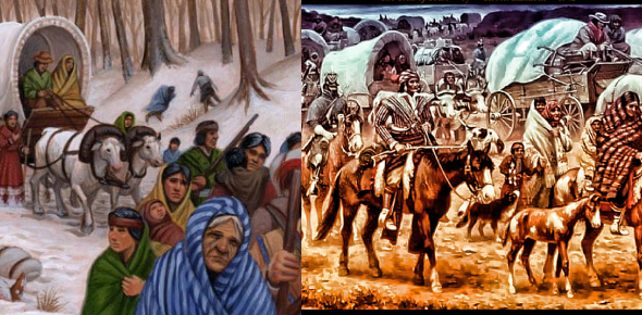 Indian Removal Act And Trail Of Tears: Quiz!
