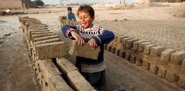 Child Labor Shocking Facts Quiz!