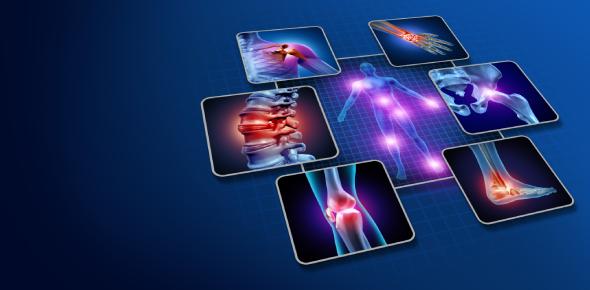 Human Heart Quiz: Anatomy And Disease