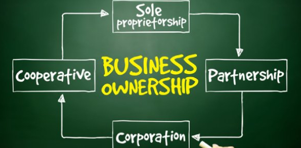 Business Ownership Questions! Trivia Quiz