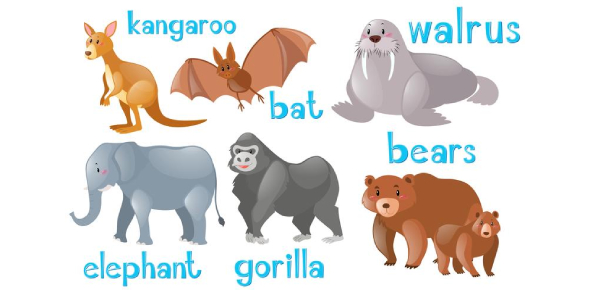 What Type Of Animal Are You? Find Out Now!