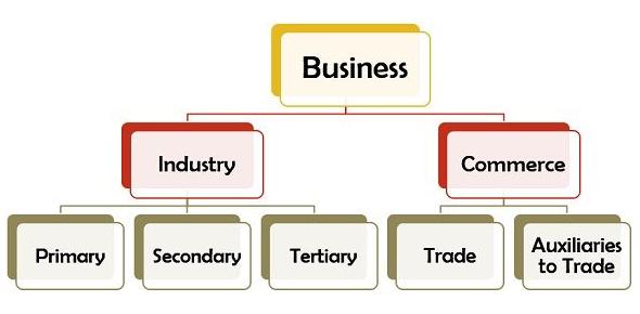 Types Of Business Activities: Quiz!