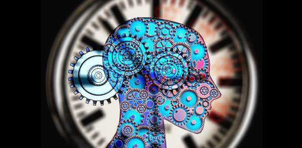 Easy Psychology Questions: Quiz!