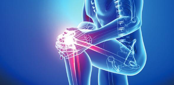 A Quiz On Orthopedic: Trivia Test!