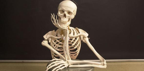Ultimate Exam On Bones! Trivia Quiz