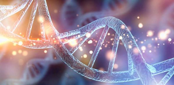 Genetics Trivia Questions! Knowledge Test! Quiz