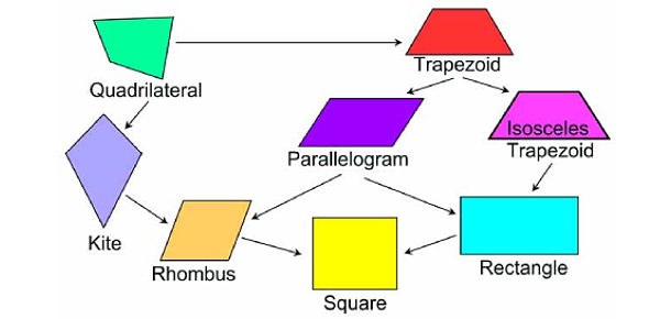 Quadrilateral And Its Types Quiz