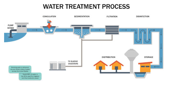 Water Purification Process Quiz! Trivia