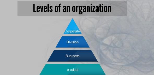 Levels Of Organization Quiz