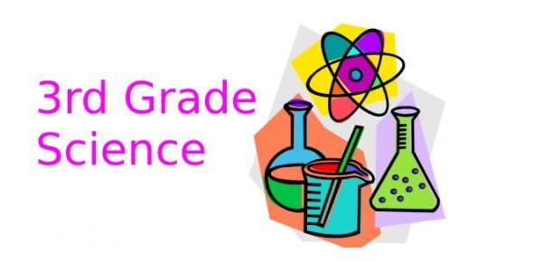 Interesting Grade 3 Science Quiz