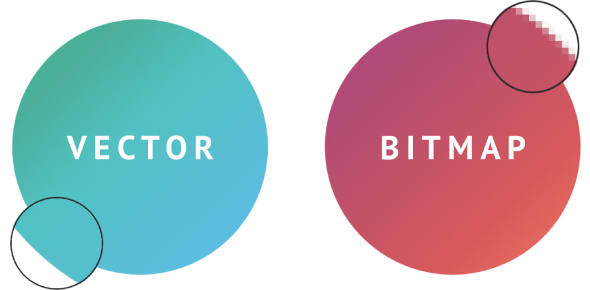 TExES Tech Apps Quiz: Vector And Bitmapped Graphics!