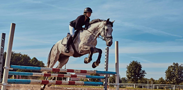 What Type Of Horse Rider Are You Quiz!