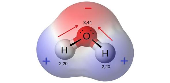 4.15 - Molecular Polarity Quiz