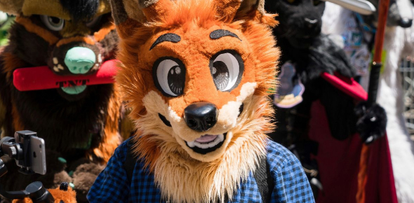 Quiz: What Kind Of Furry Are You?