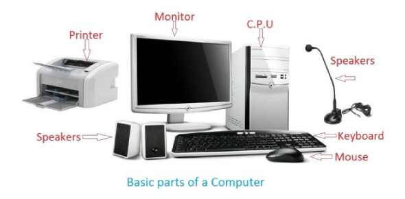 Basic Parts Of The Computer Quiz