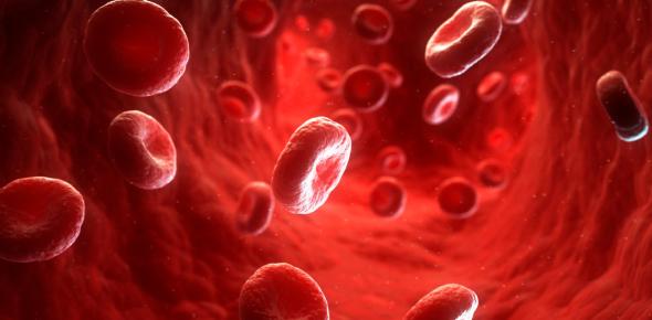 Introduction Of Hematology Quiz