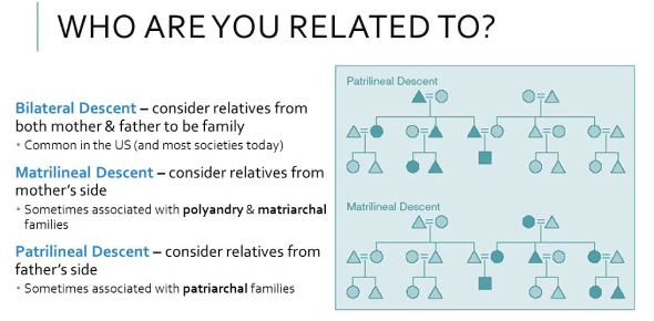 Who Are You Related Too?