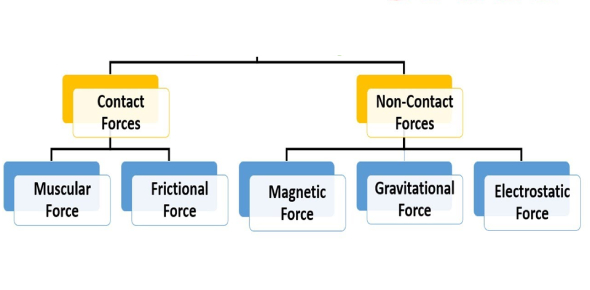 Types Of Forces MCQ Quiz: Exam!