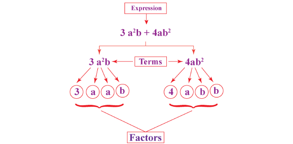 Mathematical Factoring Algebraic Expressions Quiz