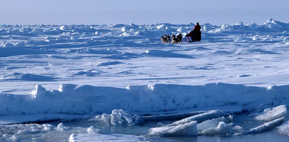 How Well Do You Know The North Pole?