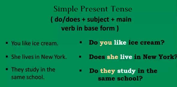 A Simple Present Tense Quiz!
