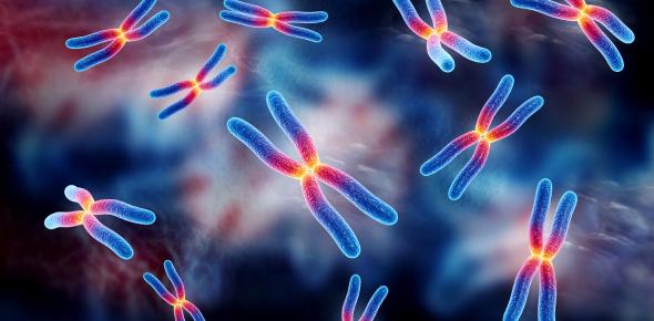 Genetics Quiz: Trivia Test Questions!