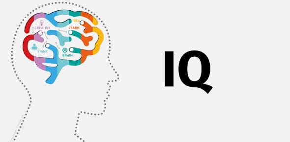 IQ Test Review Quiz: MCQ Trivia!