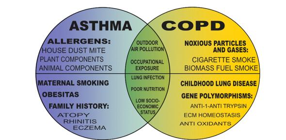 Respiratory System   Asthma & COPD NCLEX Quiz 35